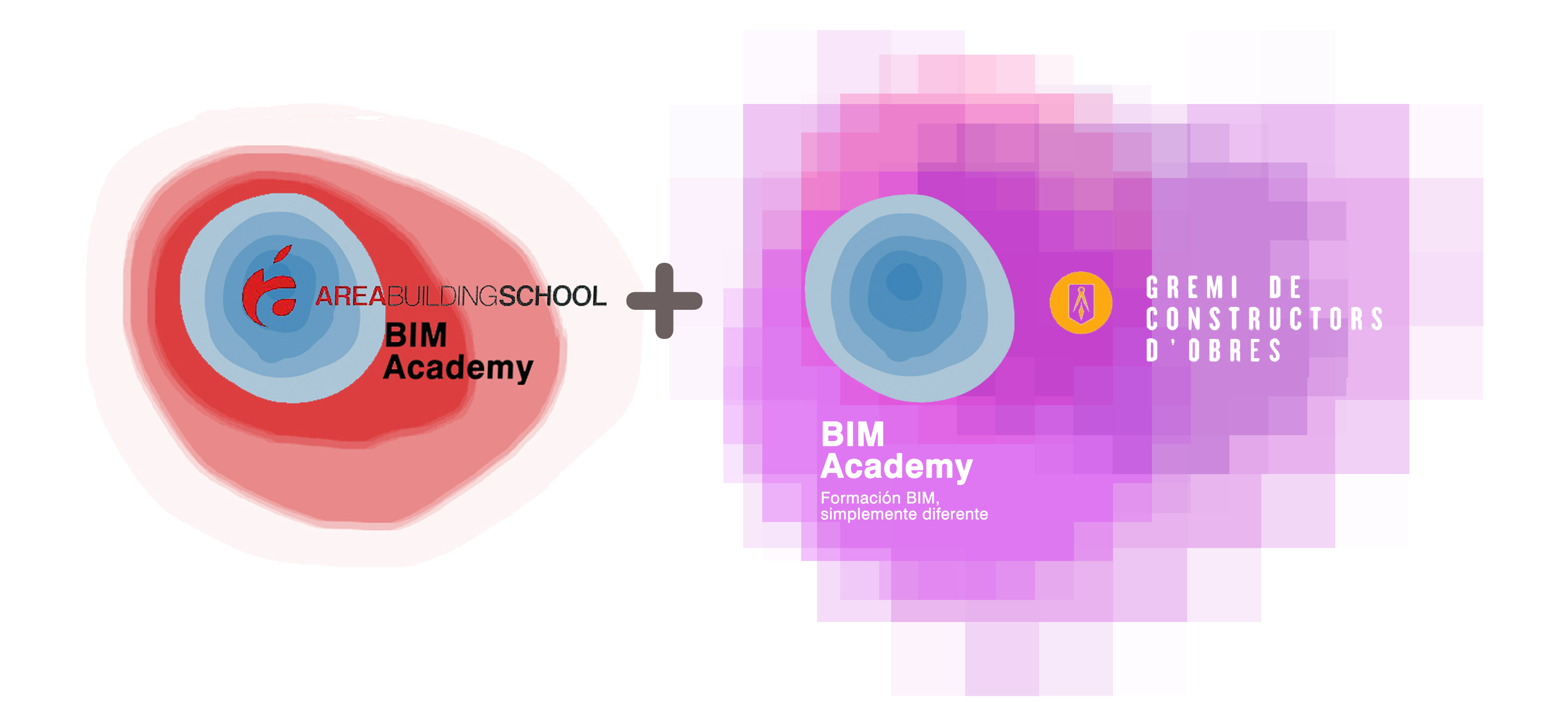Uncategorized wits institute for Bim academy